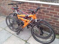 Raleigh Mountain Bikes (two)