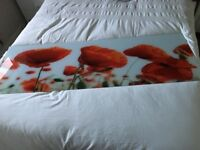 Red Poppy Glass Wall Art