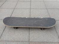 Street Gliders Evolution Skateboard
