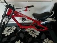 Stingray Schwan Stingray Bike