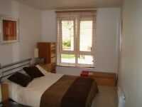 Massive double room Shared House ALL BILLS INC ¦ Clapton E5 ¦ 2 bathrooms ¦ Garden ¦ close to stns