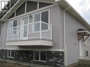 1 37 Cougar Cove N Lethbridge, Alberta