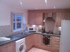 Stylish LARGE DOUBLE ROOM in 3 Bed luxury house Available Now!. - Great Location