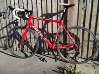 Road bicycle from Carrera