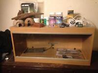Full vivarium reptile setup up