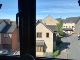 Sunny double room to rent