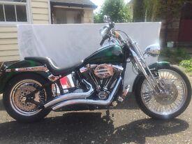 Harley Davidson,custom softail springer,8000 original miles, immaculate condition