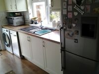Used kitchen units and appliancesUsed kitchen   Other Kitchen for Sale   Gumtree. Second Hand Kitchen Cabinets Johannesburg. Home Design Ideas