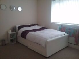 LOVELY DOUBLE ROOM RENT IN NEWCASTLE