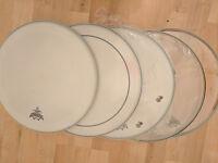 5 Snare drum heads