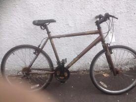 Apollo Vortice. Men's MTB. Fully serviced, fully safe and ready to go.