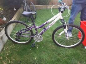 Reebok girls bike for 7-10 yr olds
