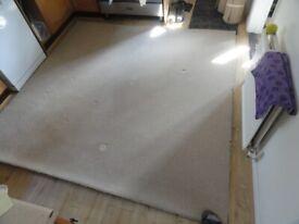 Carpet offcuts