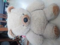 Large Teddy Bear - bought for a Teddy Bears Picnic but now have a smaller one - £2