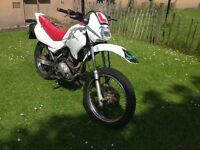 Honda Xr 125 for sale