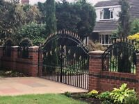 Double gates with side panals