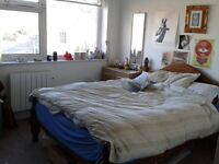 Spacious double room in friendly house share