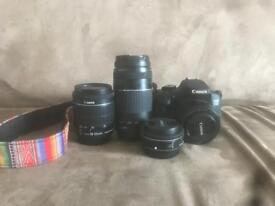 Canon camera and lenses.