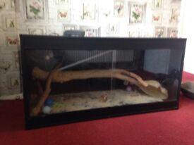 Reptile tank 4ft~2ft