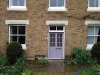 Garden flat in leafy Herne Hill - ideal for exploring the city in comfort