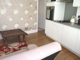 NICELY RENOVATED, FURNISHED 1 BEDROOM GROUND FLOOR FLAT WITH TINY COURTYARD AVAILABLE NOW