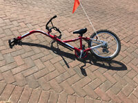 Tag along Trailer Bike to attach to adult bike