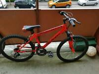 "Boys 24"" Mountain Bike"