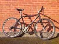Trek men's mountain bike