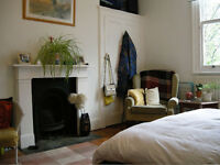 Double bedroom in lovely large house in Tufnell Park