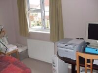 Large Single Room available in shared house