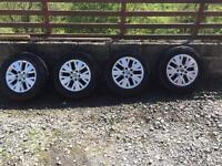 Transporter T5 Alloys and wheels