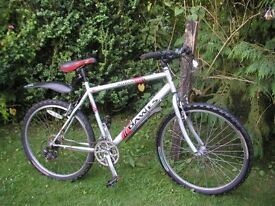 dawes 21 in frame cycle 21 speed,runs well