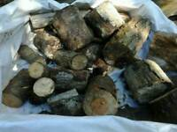 🔥fire wood 🔥, logs timber , pine wood