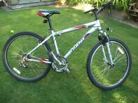 Giant Rock Men's/Teens Mountain Bike Silver VERY GOOD CONDITION
