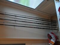 three carp rods