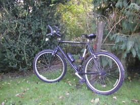 ridgeback 22 in frame 401gs 21 speed,runs perfectly,tidy bike