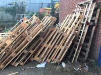 Broken pallets wood for bonfire