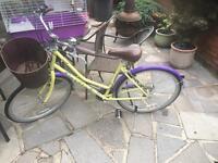 Dawes women bike used 3 time