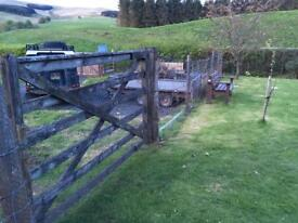Fencing and field gate for sale