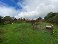GRAZING LAND | Low Rent | APPROX 2 ACRES | Cooks Field Grazing Land, Horsley Road, Ovingham | C1029