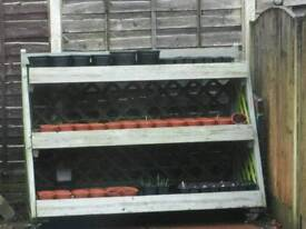 Plant Stand Sales Rack