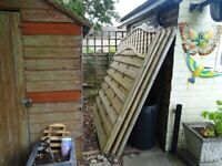 Fence Panels (FOUR) 6ft x 6ft with lattice top - AS NEW