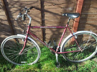 dawes street cruiser bike