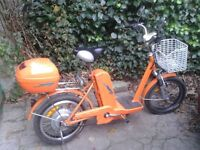 Classic Chinese Electric Bicycle