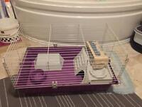 Gina cage