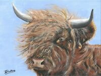 Highland Bull - Framed print in a 16 x 13 inch frame