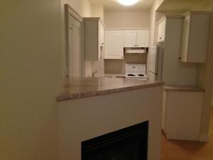 FULLY RENOVATED 2 BD 2 BATH APT! STEPS TO QUEEN'S- 432 UNION ST Kingston Kingston Area image 2
