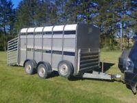 Ifor williams livestock trailer