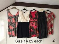 Size 14 dress bundle (17 dresses)