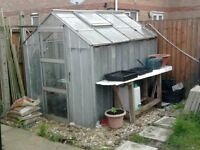 Tin shed/Greenhouse